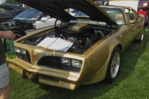 (1978) Pontiac Firebird Trans Am by auroraTerra