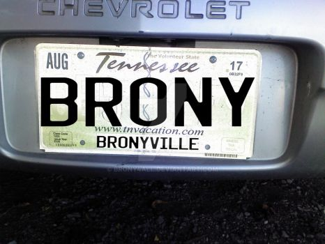 Just Got A New License Plate For Princess A.K.A Th by brony4all