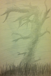 Shaded tree - old by Killerer2708
