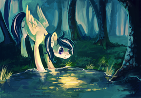 Pond by GrayPaint