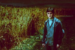 Harry Potter by LoonyAvadaKedavra