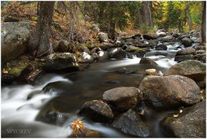 Crazy Woman Creek 2 by wyorev