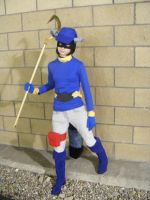 Sly Cooper 1 by OliviaOpheliac