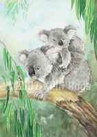 Koala and Child by KelliRoos
