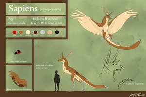 Sapiens Reference Sheet by Susiron