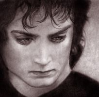 Frodo II by Fereshteh