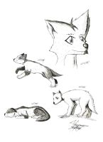 Sketches, Wolf Cubs by k9player