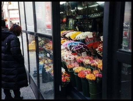 NYC - Flowers by JudeanPeoplesFront