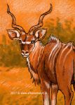 Greater Kudu by afke11
