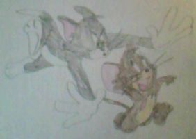Tom and Jerry by MollyKetty