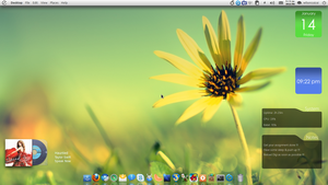 Elementary Desktop 14-01-2011 by cocooh