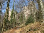 Places 386 castle ruin in forest by Dreamcatcher-stock