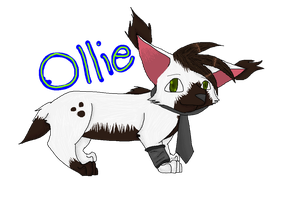 Ollie :AT: by Honoo-Koneco