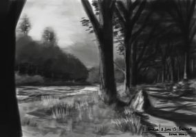 8th june 2013 - path sketch by LutherTaylor