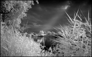 Wolni Lake Summer Infrared... by MichiLauke