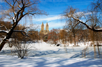 Central Park 3 by theviita