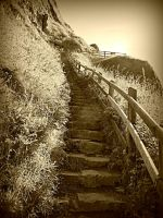 Giants Causeway steps by bebadawn