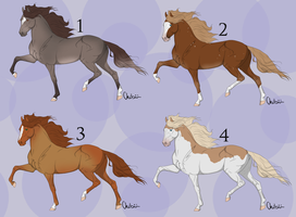 Real Horse Adoptables 3 *CLODED* by michelle222
