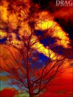 Manipulated Sunset by DisappearinEbony