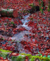 And Within Red. A River. III by Aenea-Jones