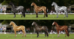 Rosendaler Auction Season 4 - New Owners by Jullelin