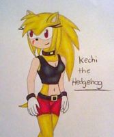 Request: Kechi the Hedgehog by GothNebula