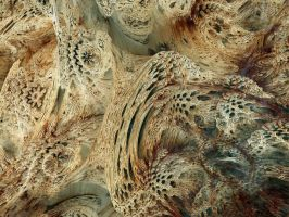 Fractal Petrifaction by Gibson125