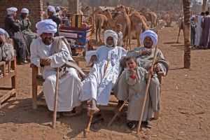 Camels market by Nile-Paparazzi