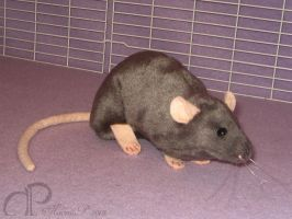 Dark Grey Rat Plushie by Morumoto