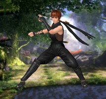 Phase-4(C4) Dead or Alive 5 Ultimate by XKammyX