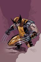 Wolverine by JasonHoward