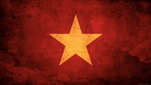 Vietnam Flag by think0