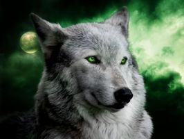 Wolf Green by lowlivier