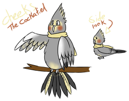 Cheeks The Cockatiel REF by Tails-Crossing