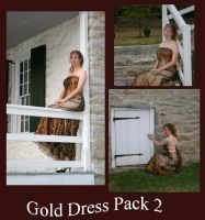 Gold Dress pack2 by TaraFly