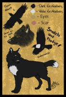 Character Sheet no. 7_Snatch and Fledge by Sally-Ce