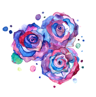 Watercolour roses by Kaynime