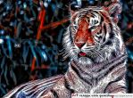 Tiger Art by art-RUG