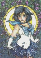 ++ Sailor Mercury ++ by CathM