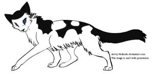 Patchpelt by Leopardflower