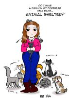 Animal Shelter by marienoire