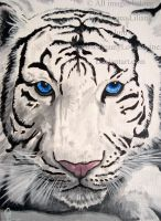 White Tiger by BeautyLoveDivine