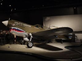 Curtiss P-40 by shelbs2