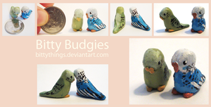 Bitty Budgies - SOLD by Bittythings