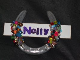 Nelly's New Name Plate by 6horsecrazygurl9
