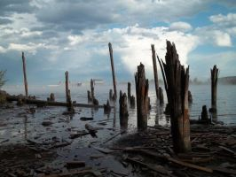 Pilings by Vanessa22Marie