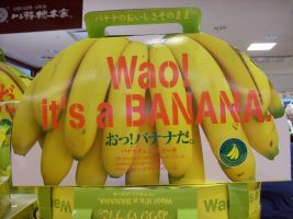 Engrish 2 Wao it's a Bananna by aichan25