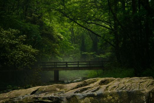 China, Zhangjiajie National forest park by Aneteee