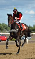 Horse Racing 225 by JullelinPhotography