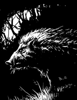 Wild boar by Agrifex